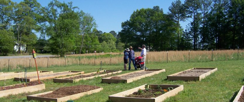 Community Garden Plots Available