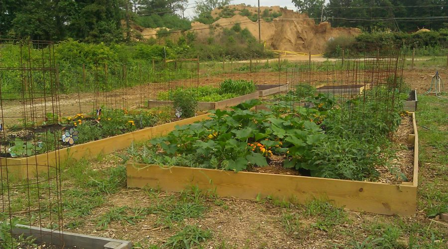 Mableton Community Garden is Ready for a New Season